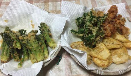 山菜づくし (1)