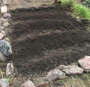 庭の畑づくり