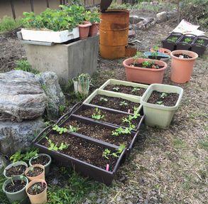 お庭のプランター