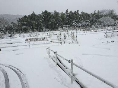 一面雪世界 (1)