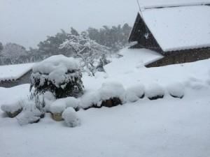 一面雪世界 (3)