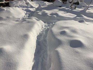 0116大雪 (1)